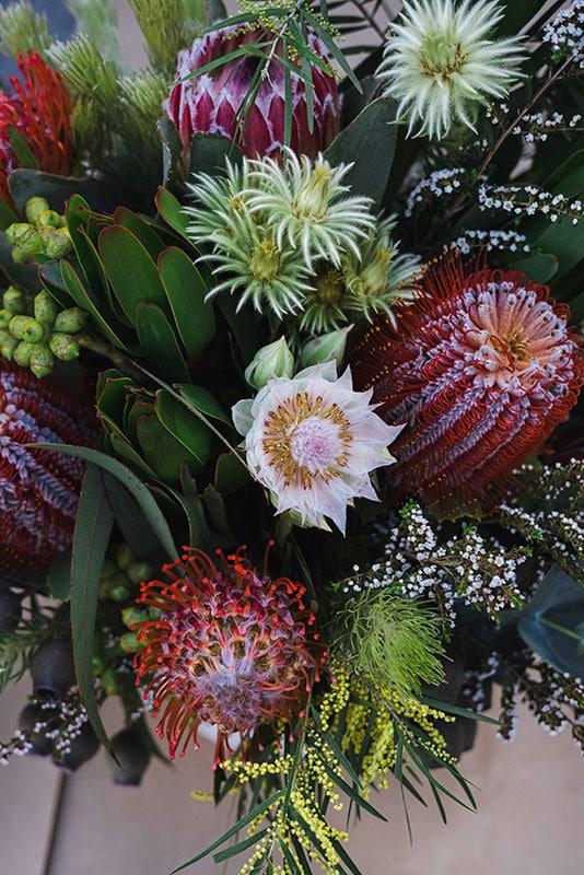 Banksia Beauty Flowers - Mater Florist